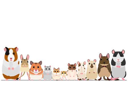 frontera de roedores mascota