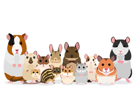 group of pet rodents 矢量图像