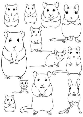 collection of pet rodents