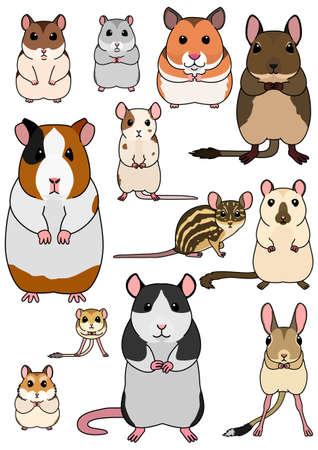 Sammlung von Haustiernagetieren