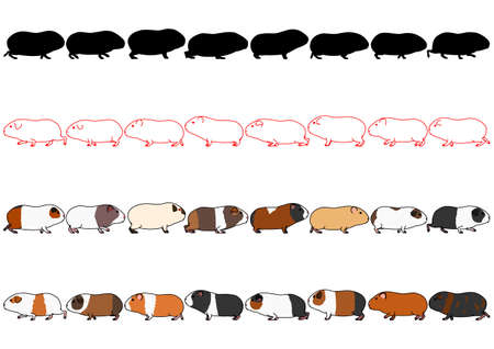 Cochons d'Inde dans une rangée Vecteurs