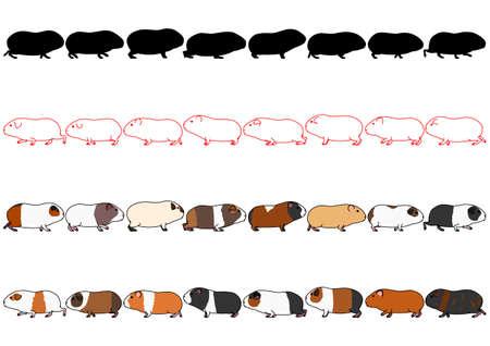 Meerschweinchen in einer Reihe Set Vektorgrafik