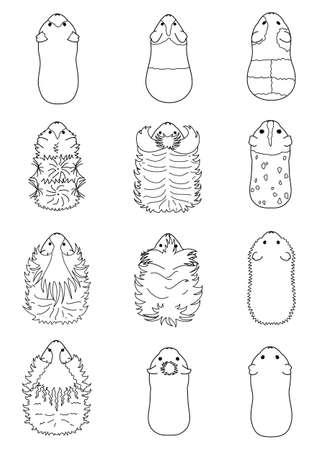 line art of guinea pigs  イラスト・ベクター素材