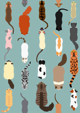 cats seamless pattern background Illustration