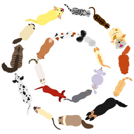 dogs and cats round frame