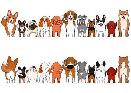 small dogs border set