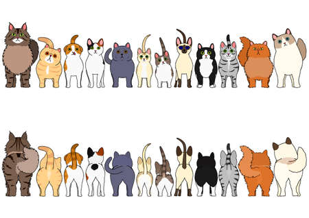 conjunto de borde de gatos Ilustración de vector