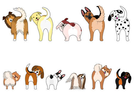Set of funny dogs showing their butts Illustration
