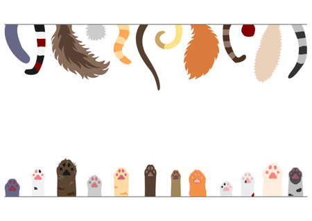 Set of cats tails and paws Illustration