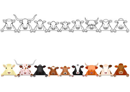 various cattle in a row 写真素材 - 120553828