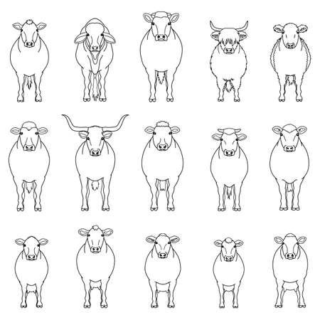 cattle line arts set Illustration