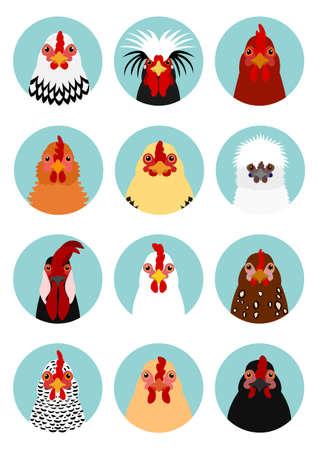 Hühnerköpfe set