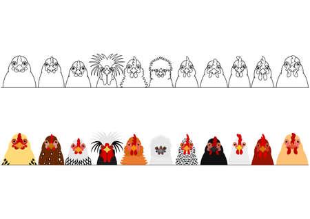 verschiedene Hühnerköpfe hintereinander Vektorgrafik