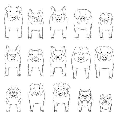 various pig line art set  イラスト・ベクター素材