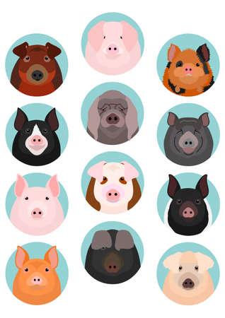 pig faces set
