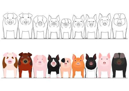 pigs border set