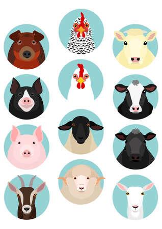livestock faces set  イラスト・ベクター素材