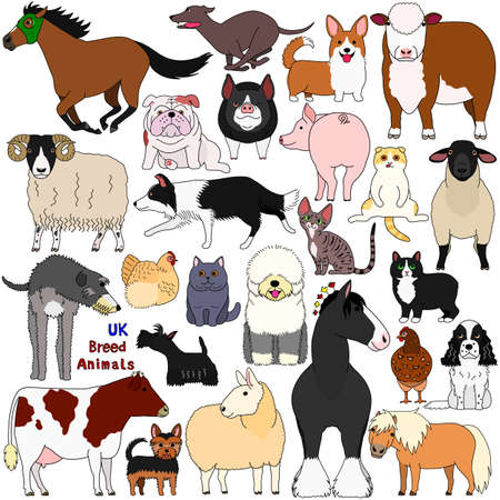 doodle of UK breed domestic animals