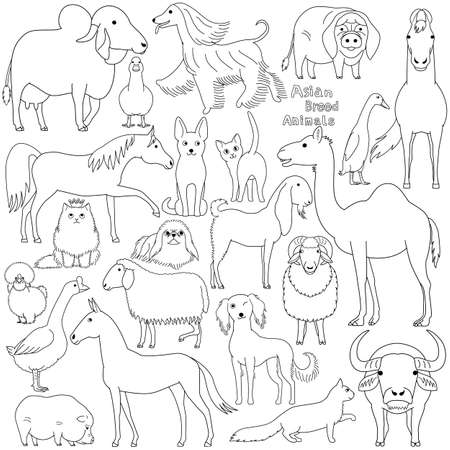 doodle of Asian breed domestic animals  イラスト・ベクター素材