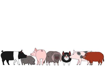 cute cartoon pig group  イラスト・ベクター素材