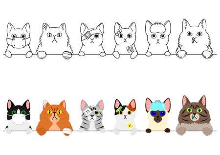 unhappy sick cats border