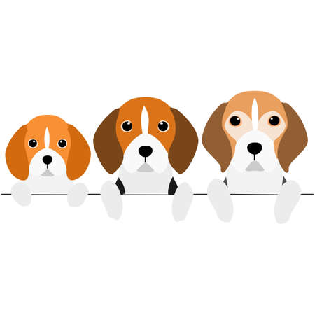 three generations of Beagles border  イラスト・ベクター素材