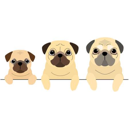 three generations of Pugs border  イラスト・ベクター素材