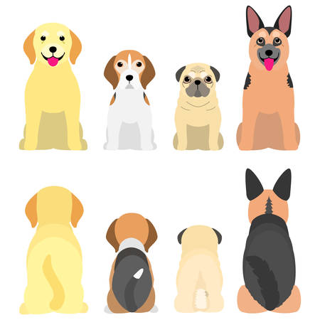 senior dogs in a row, front and back  イラスト・ベクター素材