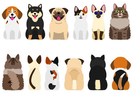 smiling cute dogs and cats set