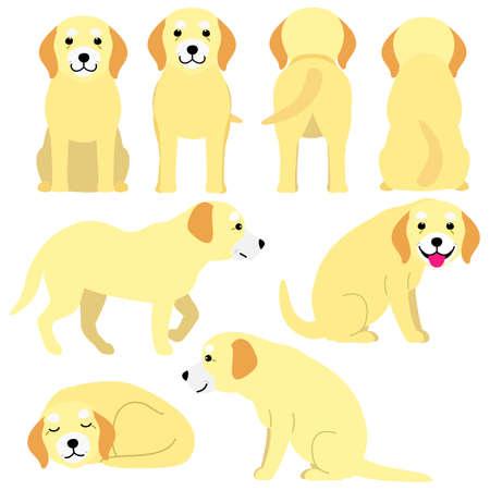 old dog postures set