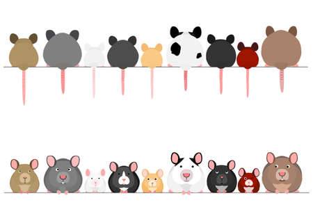 cute mice and rats in a row  イラスト・ベクター素材