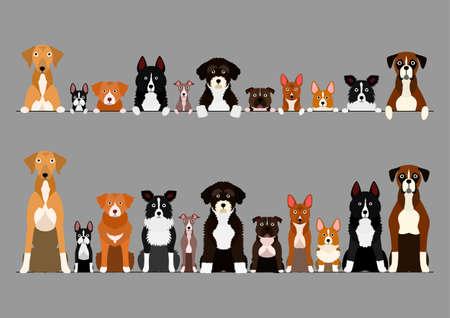 border set of white paw dogs