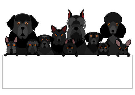 black dog group with white board Illustration