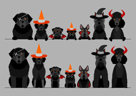 black halloween dog in a row