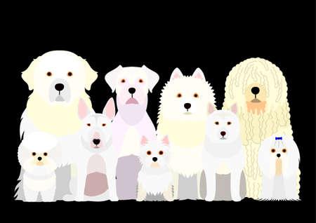 group of  white dog Illustration