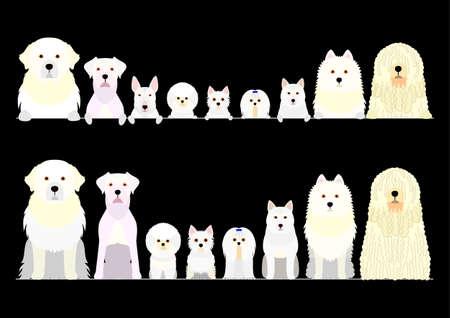 border set of white dogs