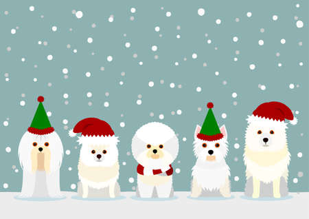 white small dogs with Santa Claus hat