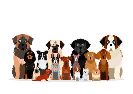 large group of various breeds dogs Illustration