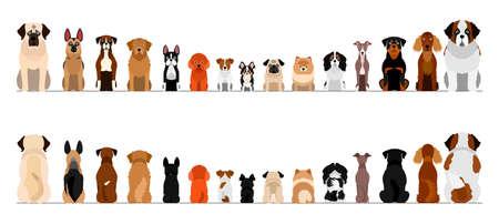 ensemble de bordure de bordure pour petits et grands chiens, pleine longueur, avant et arrière