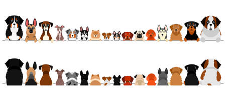 small and large dogs border set, upper body, front and back