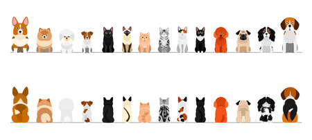 small dogs and cats border border set, full length, front and back Vectores