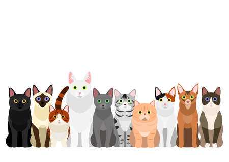 group of  various cats Illustration