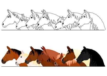 realistisches pferdekopfumrandungsset Vektorgrafik
