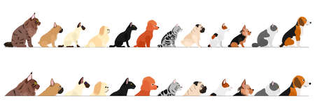set of  side view small dogs and cats border Stock Vector - 134823785