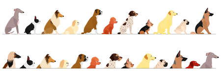 set of  side view large and small dogs border Illustration