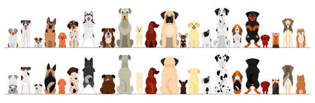 dogs big border set Illustration