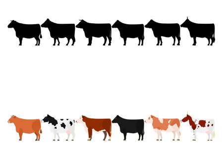 various cows in a row 1