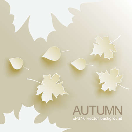 Autumn abstract  with fallen leaves Stock Vector - 23090896