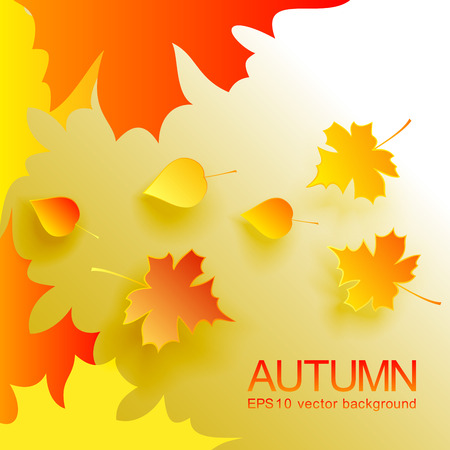 Autumn abstract  with fallen leaves Stock Vector - 23090895