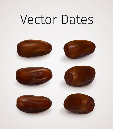 Set of Realistic Vector Dates Fruit isolated on white background. Natural Oriental Sweet Dried Fruit 版權商用圖片 - 130099352